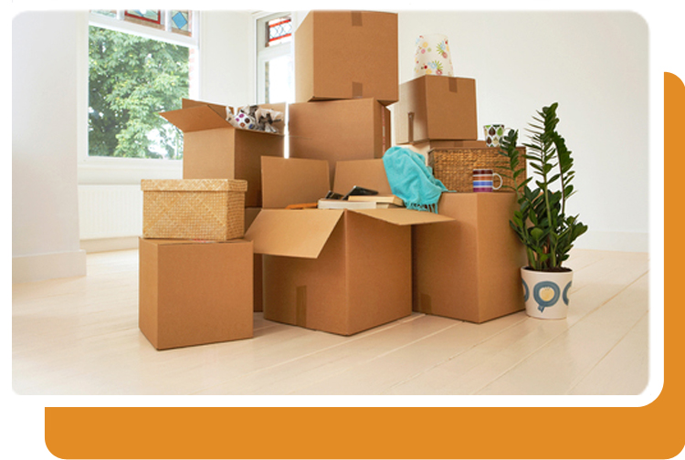 Moving and Junk Removal in Windsor-Essex